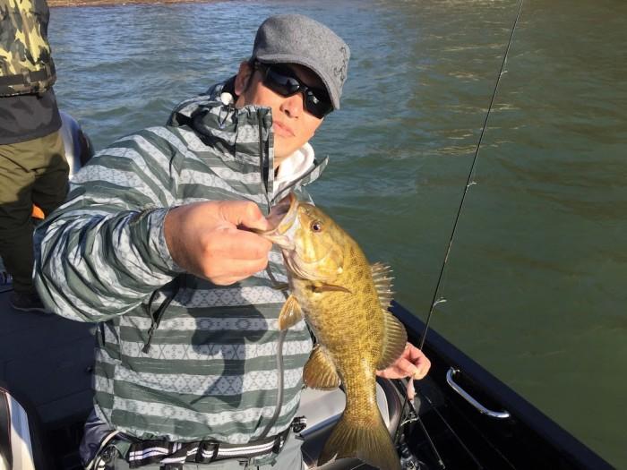 昨年のリベンジ釣行はハードベイト、スイムベイト縛りで29本!4月28日桧原湖ガイド! の写真