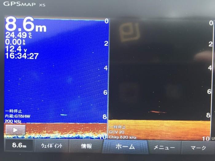 ソフトボトムでの数釣り、サイズ狙いは8~9mDSで25本ほど。8月13日桧原湖ガイド!! の写真